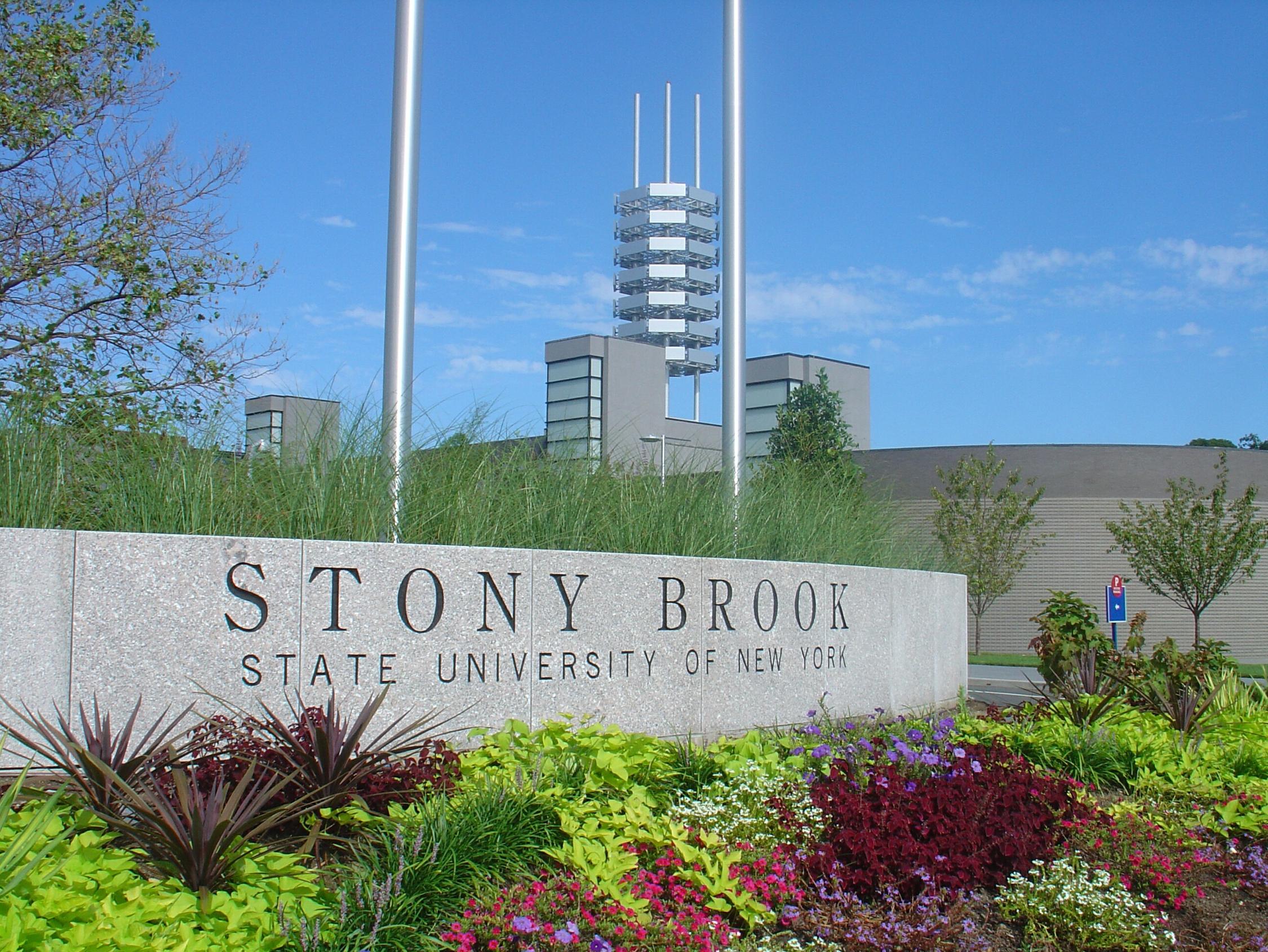 Stony brook university college of business ranking-5206