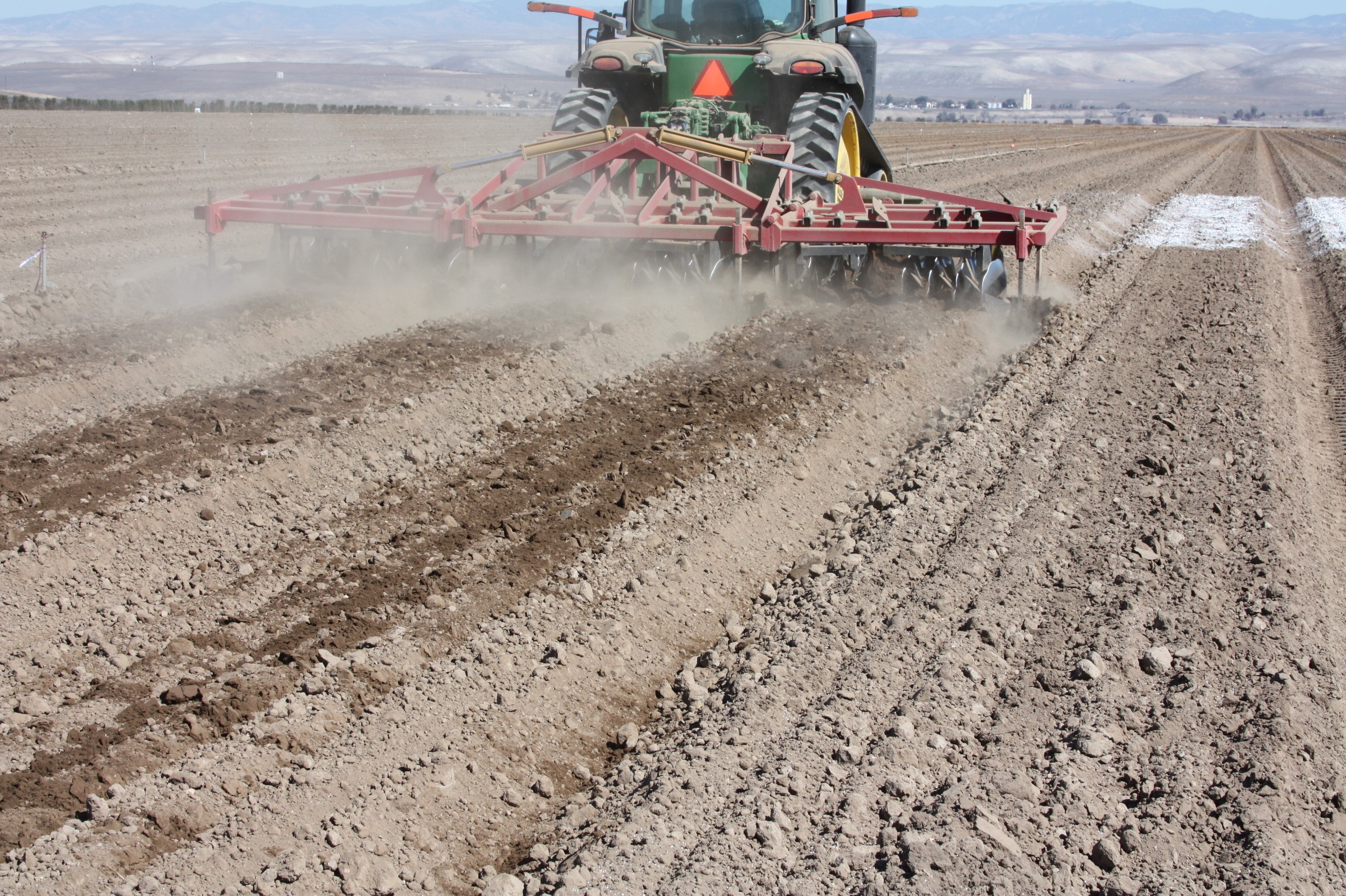 Soil amendments for healthier spinach for Soil articles