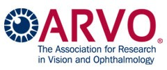 Newswise: ARVO Foundation Announces Winner of Oberdorfer Award in Low Vision Research