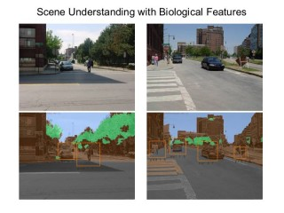 Scene Recognition with Biological Features:  