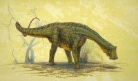 Newswise: Dinosaur from Sahara Ate Like a 'Mesozoic Cow'