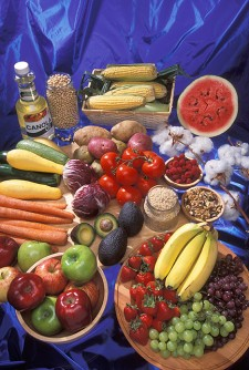 "Newswise: Dr. Mom Was Right """" and Wrong """" About Washing Fruits and Vegetables"
