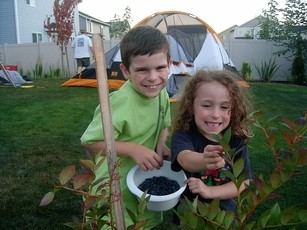 Newswise: Head Out Your Backdoor for the Great American Backyard Campout June 28