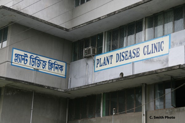 Outside of the clinic, housed at the Bangladesh Agricultural University.