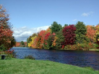 Carbon dioxide in atmosphere delays fall colors.