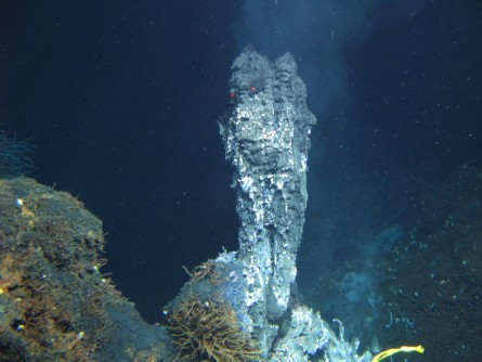 Newswise: Could Deep-Sea Microbes Teach Us About Alien Life?