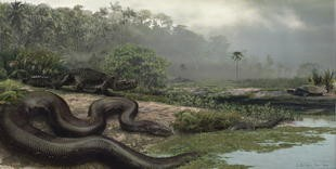 Newswise: At 2,500 Pounds and 43 Feet, Prehistoric Snake Is the Largest on Record