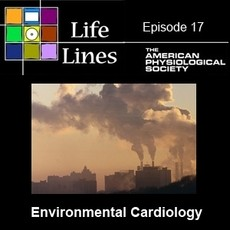 Newswise: Inhaling a Heart Attack: How Air Pollution Can Cause Heart Disease