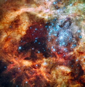 Newswise: Hubble's Festive View of a Grand Star-Forming Region