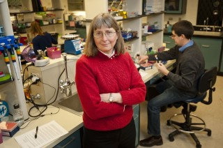 Dr. June Medford in her lab at Colorado State University.
