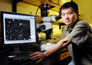 Georgia Tech School of Biology assistant professor Lin Jiang displays a microscopic image of a protist species he used to support Darwin's hypothesis...