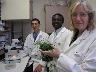South Dakota State University researcher Heike Bücking, right, and SDSU students Jerry Mensah, center, and Carl Fellbaum, left, are among the authors...