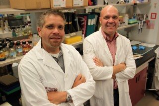 McMaster evolutionary geneticist Hendrik Poinar, left, and Gerry Wright, scientific director of the Institute for Infectious Disease Research, are pictured...