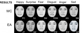Above:  An illustration from the study reveals the difference between how Western Caucasians (WC) and East Asians (EA) perceive the six basic facial expressions...