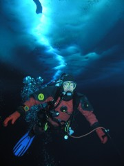 University of Delaware researcher Adam Marsh dives under the Antarctic ice. Photo by Stacy Kim