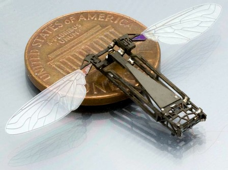 Newswise: Studying Butterfly Flight to Help Build Bug-Size Flying Robots