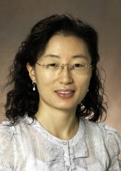 Hyunsook Do, Ph.D., assistant professor of computer science at North Dakota State University, Fargo, has received a Faculty Early Career Development award...