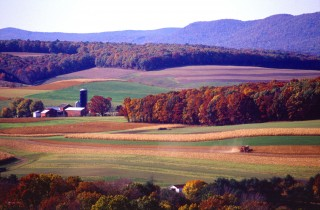 A combine harvester works through a field in the northeastern USA. Farming relies heavily on fertilizer use.