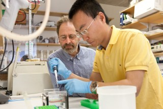 Marc R. Montminy, Professor, Clayton Foundation Laboratories for Peptide Biology and Yiguo Wang, research associate.