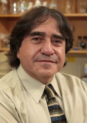 Fernando Gomez-Pinilla, Ph.D., UCLA professor of neurosurgery at the David Geffen School of Medicine and of integrative biology and physiology at the College...