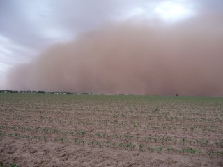 Dust storm near Lubbock, Texas