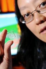 Georgia Tech associate professor Hang Lu holds a microfluidic chip that is part of a system that uses artificial intelligence and cutting-edge image processing...