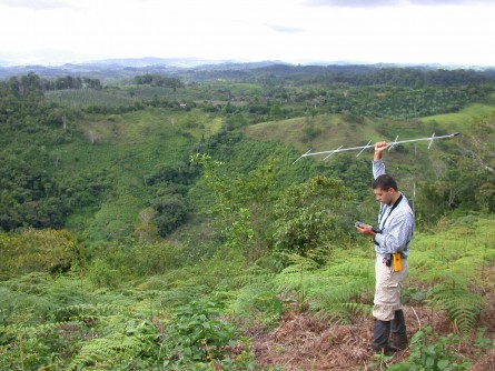 Newswise: Birds Do Better in 'Agroforests' Than on Farms
