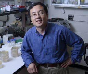 Peihua Jiang, PhD, Assistant Member at the Monell Center