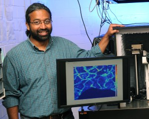 Sanjeevi Sivasankar leads a research team that uses atomic force microscopy and other technologies to study the bonds that connect biological cells.