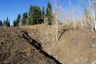 USDA Forest Service lands in Montana show the impact of cattle grazing.