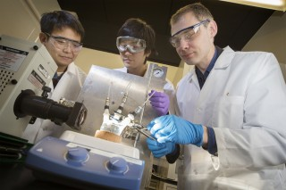 Stony Brook University researchers led by Alexander Orlov, PhD, Assistant Professor of Materials Science & Engineering at Stony Brook University, are producing...