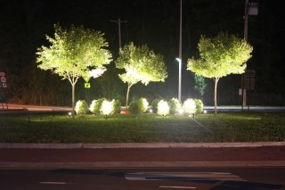 Ecoluminance uses a combination of lighting and vegetation to provide visual delineation, illumination for important safety hazards and concerns, and cues...