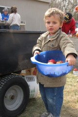 Three-year-old Lorenzo Burger gathers apples in a colander and will then dump them into the vat of bleach water.  He and his family moved to Brookings...