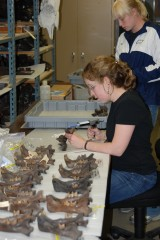 Larisa DeSantis (sitting) making dental molds of the teeth of saber-toothed cats at the La Brea Tar Pits.