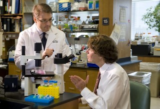 Co-senior author and Program Director Carl blobel, M.D., Ph.D., left, works with collaborator Lionel Ivashkiv, M.D., in the Arthritis and Tissue Degeneration...
