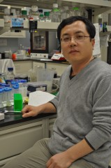 Monell Center molecular neurobiologist Peihua Jiang, Ph.D.