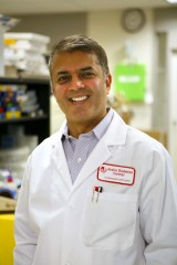 Rohit N. Kulkarni, M.D., Ph.D., is Principal Investigator in the Section on Islet Cell & Regenerative Biology at Joslin Diabetes Center and an Associate...