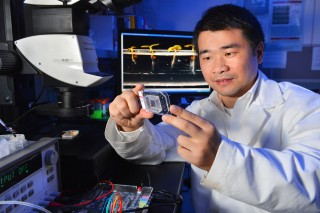 Liang Dong is developing an instrument that will allow plant scientists to simultaneously study thousands of plants grown in precisely controlled conditions.