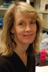 Sue Biggins, Ph.D., is a member of the Basic Sciences Division at Fred Hutchinson Cancer Research Center in Seattle.