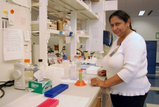 Ratna Ray, Ph.D., professor of pathology at Saint Louis University School of Medicine, is studying the ability of an extract from a common Asian vegetable...