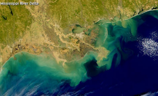 Dead zones form where river water carrying sediment and pollutants meets ocean water of the Gulf.