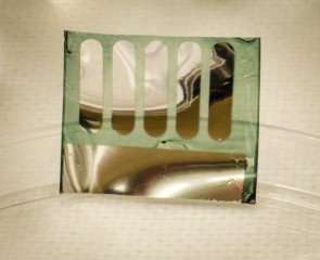 Photograph of a solar cell fabricated at Georgia Tech on nanocellulose substrates derived from trees.