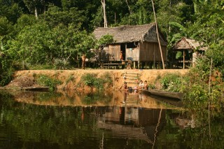 A forest-dependent household in the Brazilian Amazon.