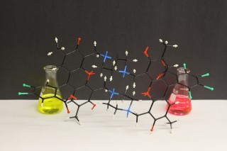 University of Chicago researchers have created a synthetic compound that mimics the complex quantum dynamics observed in photosynthesis. The compound may enable...