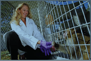 MD Anderson's Kirstin Barnhart, D.V.M., works with rhesus monkeys to study the efficacy of a new weight-loss drug. <a href=&quot;http://www.mdanderson.org/publications/conquest/issues/2012-spring/weight-loss-obese-monkeys.html&quot;>Click...
