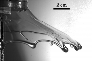 This image is of a liquid sheet squeezed from two clapping hands at the velocity of 10.2 centimeter per second.