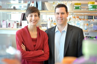 University of Chicago investigators Megan McNerney, MD, PhD, instructor of pathology, and Kevin White, PhD, professor of human genetics and director of the Institute...