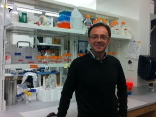 Alessandro Vindigni, Ph.D., associate professor of biochemistry and molecular biology at Saint Louis University