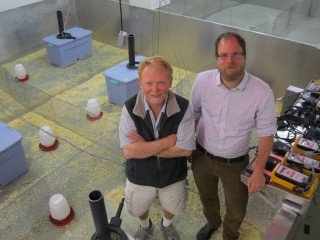 University of Utah biology professor Wayne Potts, left, and former Ph.D. student James Ruff conducted a new study showing that sugar is toxic to mice in doses...