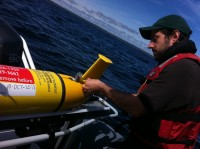 Newswise: Ocean-Sampling Robot Gliders Tracking Animals, Providing Storm Data